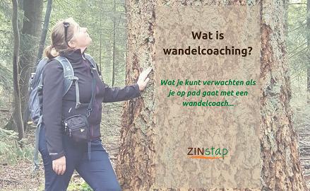 Wat is wandelcoaching?
